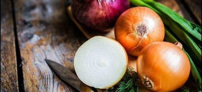 Какие полезные вещества содержит в себе лук?